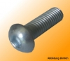 Rounded head screw M8x25